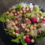 Sprouts: An Easy Way to Grow Your Health