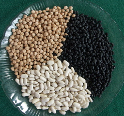 Garbanzo Beans, Kidney Beans and Black Beans