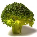 Broccoli: A Must Eat Vegetable!