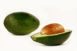avocado_sliced