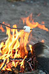 Roasting a Marshmellow